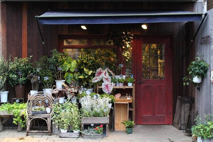新宿・神楽坂の花屋『jardin nostalgique(ジャルダンノスタルジック)』は、お花とお菓子、そして雑貨が詰まったすてきが詰まったショップ。季節の生花やドライフラワーで作られたリース、アンティーク雑貨などが並んでいます。