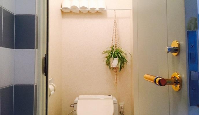 突っ張り棒1本で、トイレットペーパーのストックを収納して、オリヅルランの鉢をハンギングしました。規則的に置くこと、余計なものを置かないことでスッキリさせて見せる収納として使っています。