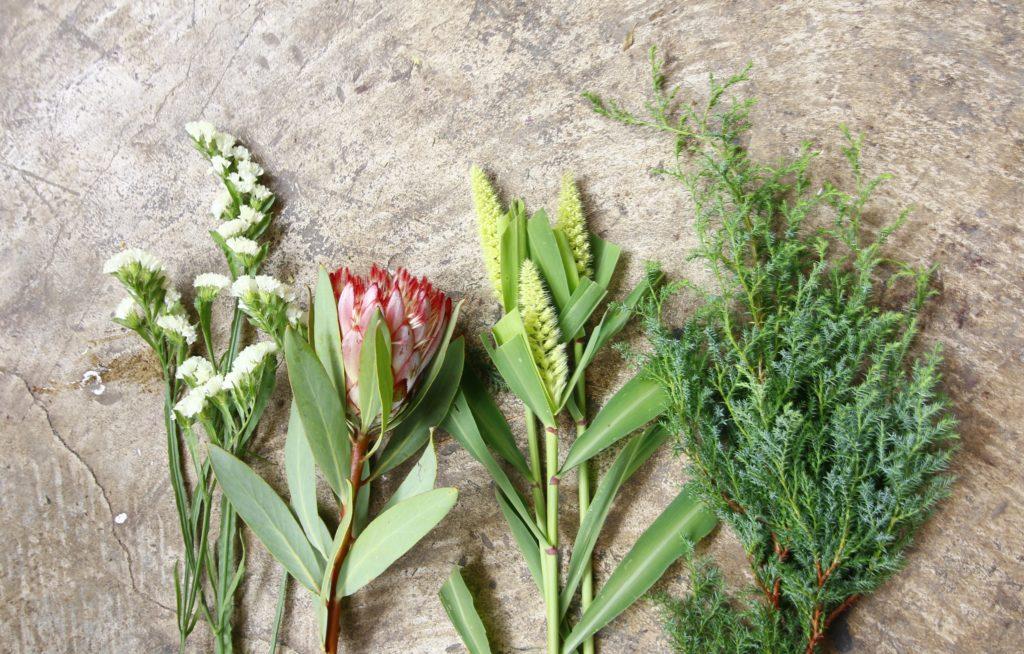 1.材料を用意しよう  今回の花材は、左からスターチス(リモニューム)、プロテア、アワ、ヒムロスギです。ドライになりやすい種類ですと、フレッシュな状態からより長くお花を楽しめます。自分で作る際、スワッグの花材を選ぶときは、お花屋さんに聞いてみるといいとおもいます。花材のほかには、花ばさみ(花を切るはさみ)、クラフトばさみ、麻ひもを用意します。