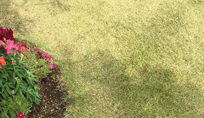 庭の雑草や除草作業が大変で、いっそのことコンクリート施工にしようと思っても、施工するのになかなかな金額になりますね。  そんな時に使用してみたいと考えるのが、防草シートではないでしょうか。  防草シートとは、雑草を防ぐために張るもの。  と誰でもイメージがつくものですが、本来なぜ防草シートが雑草を防ぐのかというと次の2点があげられます。  1 太陽光に当たらないようにする。  2 飛来してきた種子はシート上では発芽できない。  「なるほど、早急に我が家にも防草シートを張ろう!」と意気込んだ方、実際に防草シートを張った方で失敗例が多々あるようです。  それは、防草シートの種類や内容をよく把握する前に張ってしまったからのようです。  そんなトラブル回避のため、防草シートについて少しお勉強してみましょう。