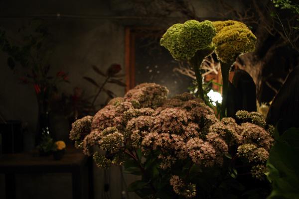 新宿・神楽坂にある花屋『小路苑(こじえん)』。店内には、季節の花々やグリーンが並び、落ち着きのある風情のあるすてきな空間が魅力的です。