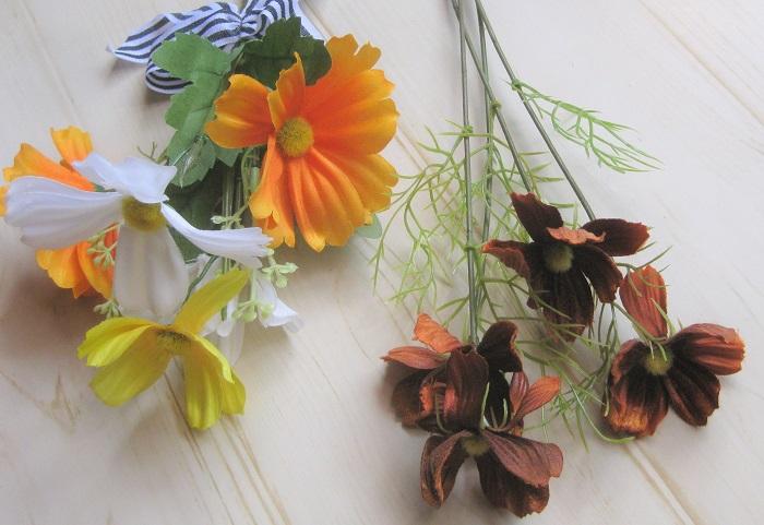 ハロウィンカラーの花