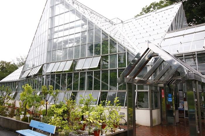 写真は温室の外観。ちなみに冷房室は入室せず窓の外から観察します。    漢方原料植物区