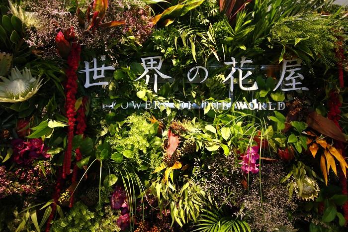 切り花の輸入をしている株式会社グリーンパックスは、「世界の花屋」をオープンさせました。きっかけは何だったのでしょうか?  仕事で一カ月で世界を一周する、代表の小林邦宏さんは、世界で様々な草花に触れ合う中で、世界中に魅力的な草花が多くあり、もっと日本でも展開していくことができないか?とモヤモヤしていたそうです。  そんな時に前田有紀さんから、ロンドンにいたときは、世界中の素敵な花がロンドンに集まってくることにとても感銘を受け、東京にもロンドンのように世界中の草花が集まったら素敵ではないかと、小林邦宏さんに打ち明けたことがきっかけで、「世界の花屋」をオープンさせる経緯に至ったそうです。