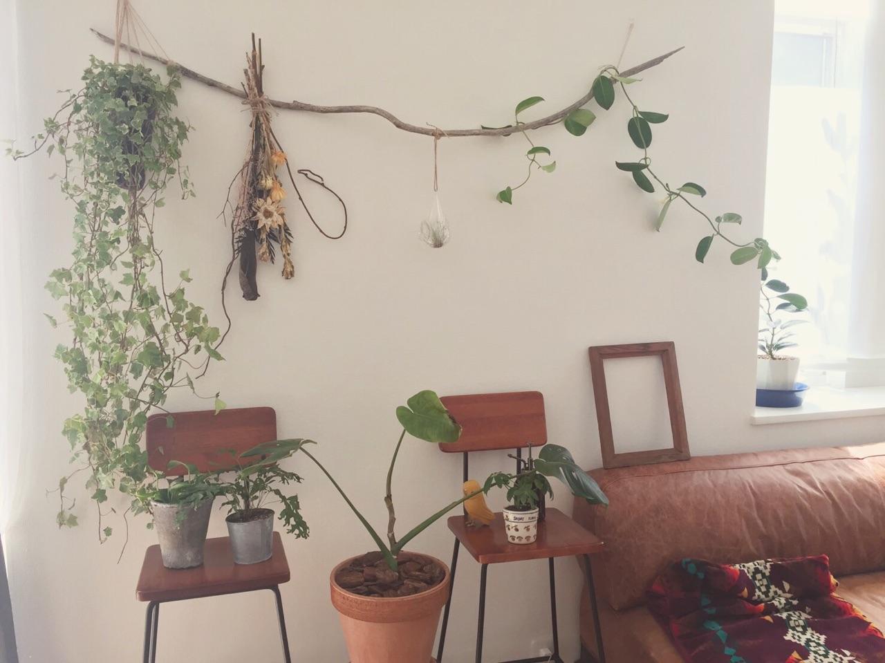 流木にドライフラワーをぶら下げたり、つる性の植物を絡ませたり、うまく活用していますね。 @mituleacさん提供