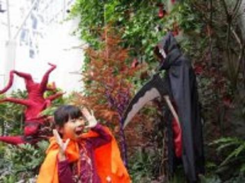 画像提供:花フェスタ記念公園  ハロウィンのイメージにぴったりの植物を組み合わせ、ハチャメチャでちょっぴり怖い世界を表現しました。今回は「砂」でできたハロウィンキャラクター達が登場! ガーデンの中には、恋に落ちた「ハートの目を持つかぼちゃん」がいるので探してみてください。さて、恋のお相手はだれかしら!?  ハロウィン気分を盛り上げる衣装や小物を無料で貸し出すコーナーもあります。  さぁ、みんなで仮装してはじけちゃおう!    ▼このイベントについてくわしくみる!