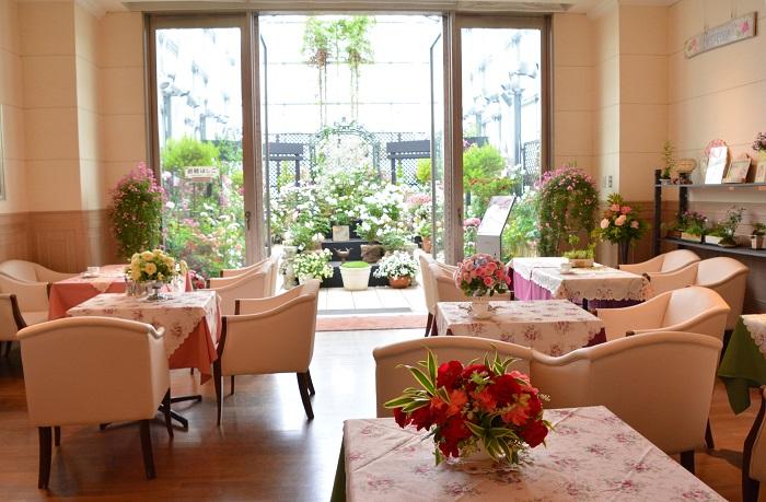 ファンケル銀座スクエアでは、屋上のテラスにバラが大集合します。期間中は様々なイベントも開催。予約不要なのでお気軽にお越しください。