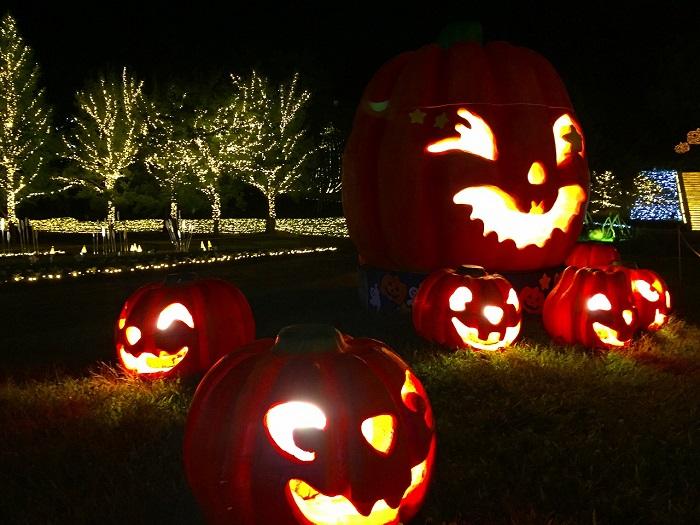 画像提供:国営武蔵丘陵森林公園  10月7日(土曜日)から11月5日(日曜日)までの土日祝限定の夜間イベント。ハロウィンにちなんだ装飾やイベントをはじめ、ライトアップとアートなイルミネーションで普段は体験することができない夜の公園をお楽しみください。