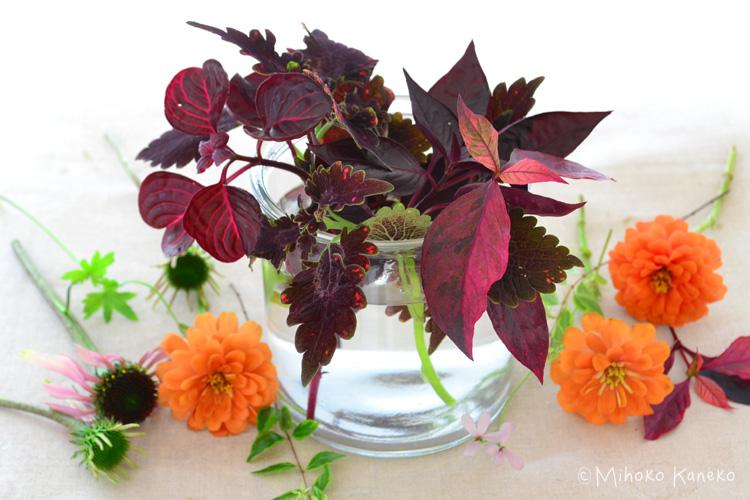 最初に枝分かれしているカラーリーフを花瓶に生ける。