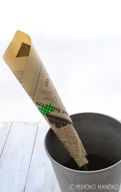 買ってきたバラがぐったりしてしまったら・・・茎を数ミリカットした後、新聞紙でまいて深水に2~3時間つけます。新聞紙は添え木のような役割をするので、花びらが傷つかない程度に花にそってぴったりとくるみます。紙はツルツルした水をはじくような紙より、新聞紙のような吸水性のある紙が適しています。