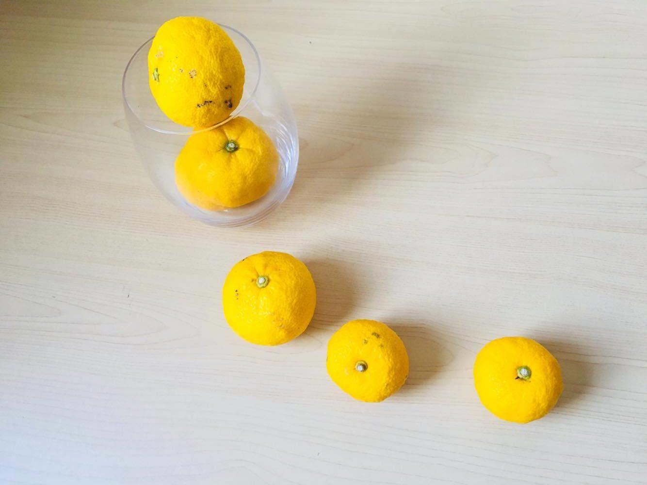 柚子はミカン科ミカン属の常緑小高木で、夏は青い果実の収穫期、晩秋から冬にかけては鮮やかな黄色の香り高い果実の収穫期になります。  柚子は耐暑性に優れているだけでなく、ミカン科の柑橘系では珍しく耐寒性も高いため、北は東北地方まで栽培することが可能なんです。  柚子の特徴として枝には鋭く長い棘がありますが、近年では棘のない品種もでています。  育て方はとても簡単!  プランターでも育てることができるので、お庭だけでなくベランダでも栽培可能な植物です。  ブルーベリーなどと違って、自家結実性の性質から柚子の木1本で実をつけます。  柚子の実は非常に酸味が強く、他の柑橘系の果物に比べて生食には向きませんが、調味料やジャムなどに使われます。  実の部分だけでなく、柚子の皮の部分を刻んで料理に添えるだけで、風味がよく出る優れた食材です。  また、強い香りで邪を払うということから厄除けの植物として、冬至の柚子湯には欠かせない存在です。