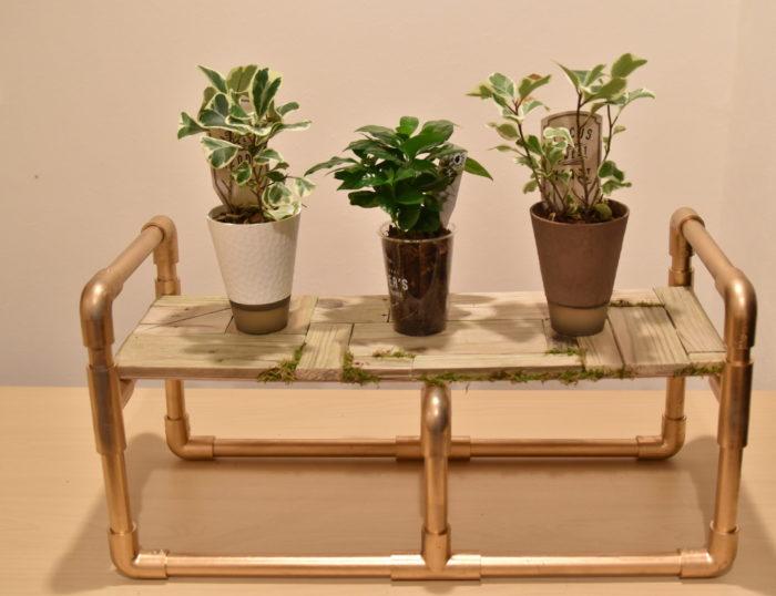 こんな風に植物を飾ってみるのもいいですね。  棚板が木なので温もりが感じられます。