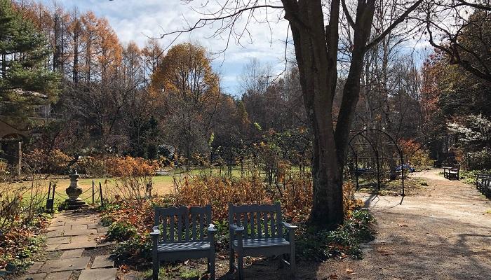 ガーデンはそこかしこにベンチやチェアがあるので、散策しながらくつろぐこともできます。