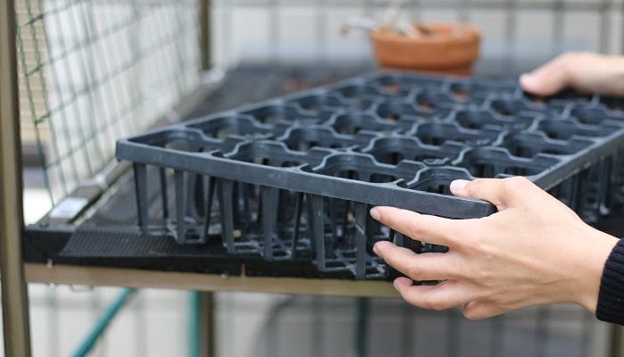 使っていないトレイや空いた鉢は風で飛ばないように片づけます。