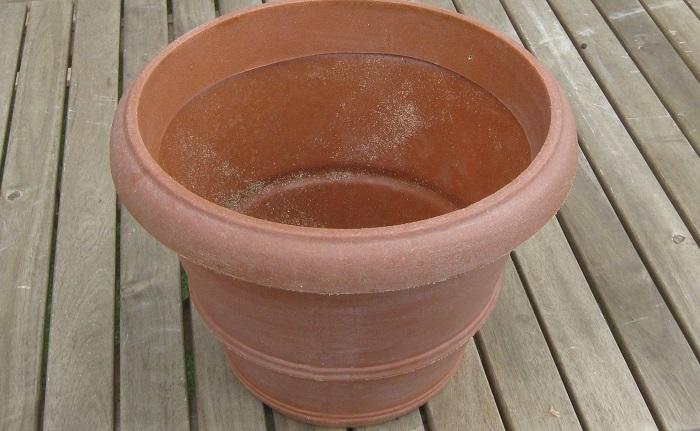 秋植え球根3種(チューリップ、スイセン、ムスカリなど) 9cmポット苗5ポット(秋から春に咲く一年草がおすすめ) やや深さのあるコンテナ(今回は内径25㎝、高さ30㎝ほどのサイズ) 肥料入り培養土 鉢底石 鉢底ネット 土入れ ジョーロなど