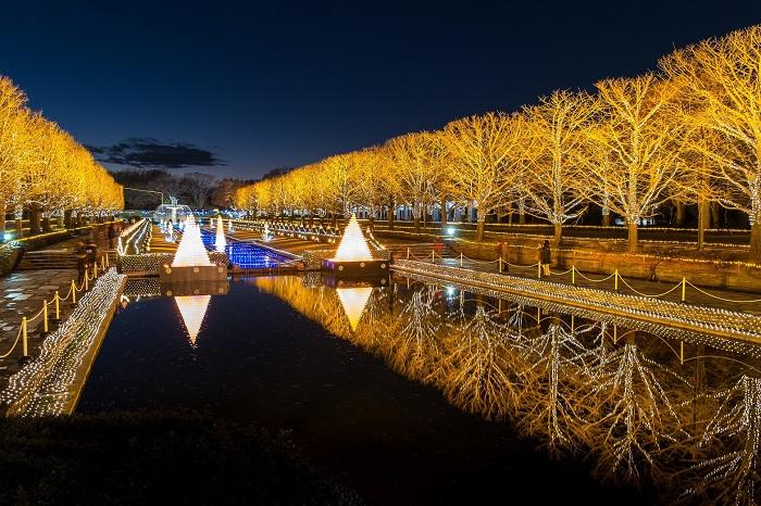 """画像提供:国営昭和記念公園  12月2日(土)~12月25(月)に17時~21時まで夜間特別開園をして行う「WinterVistaIllumination2017」。  """"公園の四季""""をテーマに皆様を煌きの世界へご案内します。  シャンパングラスタワー  ゲートを入ってすぐ皆様をお出迎えするメインオブジェ。約15,000個のグラスでつくる、高さ4.5mの""""シャンパングラスのタワー""""が光と水が織成す幻想的な輝きを放ちます。  カナールと大噴水のライトアップ  公園のシンボル的存在の大噴水と4つの樹氷型噴水を水路で結ぶカナールのライトアップを行います。  イチョウ並木のイルミネーション  200mのカナール沿いに植栽されたイチョウ並木をイルミネーションで装飾し、光のトンネルを作ります。  ビックリース  公園ボランティア手作りの大きなリース。写真撮影スポットとしてもおすすめです。  EVENT~イベント~  冬の花火  イルミネーションマラソン      ▼イベント情報をくわしくみる!"""