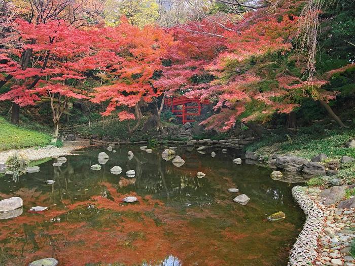 画像提供:小石川後楽園  都心にありながらも深山の景を有する小石川後楽園。480本あるイロハモミジの紅葉期は、情緒豊かな季節のひとつです。錦秋に染まる庭園へ、ぜひお越しください。    ▼イベント情報をくわしくみる!
