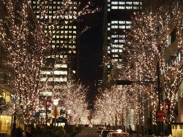 画像提供:丸の内PR事務局  ブランドショップが並ぶ約1.2kmにおよぶ丸の内仲通りの200本を越える街路樹が、上品に 輝く丸の内オリジナルカラー「シャンパンゴールド」のLED約98万球(大手町仲通りイルミネーション含む)で彩られ、クリスマスシーズンの 華やかな街並みを演出します。   有楽町エリア(国際ビル、新国際ビル前)では従来のストリングス型のイルミネーション装飾に 加えて今年より新たに、アール・ヌーボー調のデザインをモチーフにした高さ約6mの光のゲートが登場するなど、「丸の内 イルミネーション」に一層の彩りを添えます。また本年も、大手仲通りでのイルミネーション装飾を実施します。    ▼イベント情報をくわしくみる!      ▼クリスマスのイベント情報はこちら!