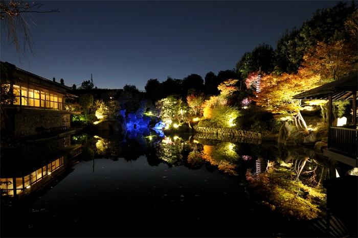 画像提供:目白庭園  JR目白駅から徒歩5分の立地で、池泉回遊式庭園を楽しめます。秋の紅葉シーズンには様々なモミジが赤や黄色に色づきます。この時期には夜間特別開園ライトアップを実施し、穏やかな昼の紅葉と幻想的な夜の紅葉をご覧ください。    ▼イベント情報をくわしくみる!