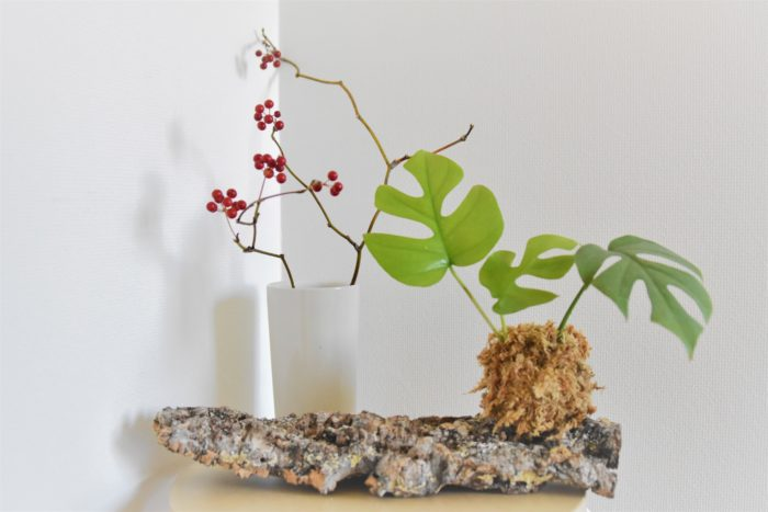 壁に掛けずに平置きにするのも趣があっていいですね!  モンステラは常緑なので、季節の実物や花あしらいとも合いそうです。