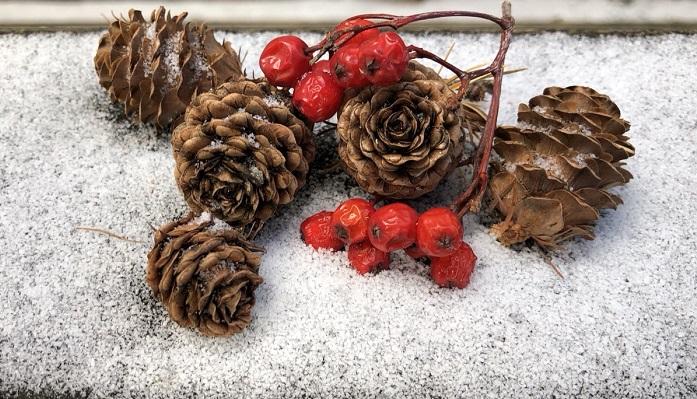 松ぼっくり、ナナカマドの実や、オーナメント、リボンなど作りたいテイストの飾り