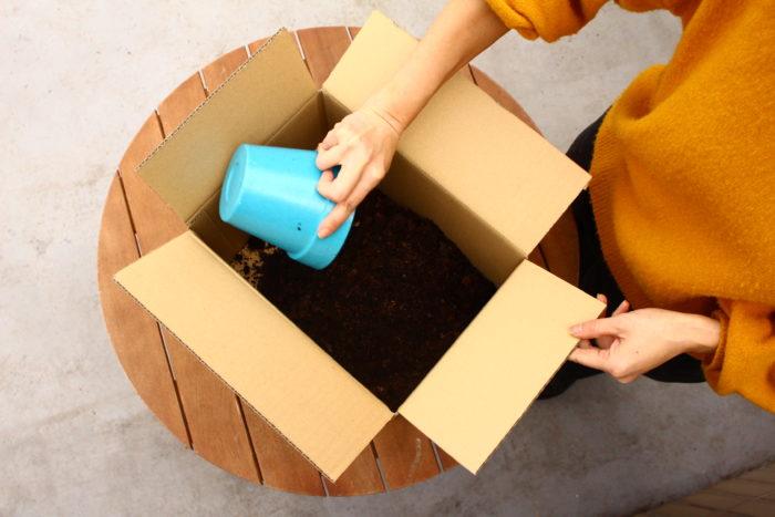 3. 段ボールの中に腐葉土を入れます。