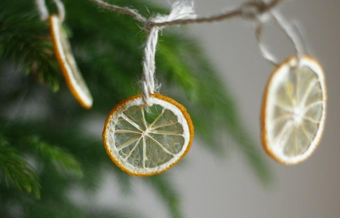 活用方法がたくさんあるレモン。料理で余らせてしまったときは、掃除やインテリアに活かしてみるのもいいですね。また家庭でも栽培しやすい果樹なので、ぜひ育ててみてください。