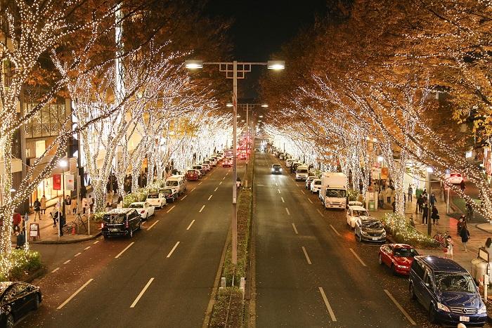 画像提供:欅会  7年ぶりに神宮橋交差点から表参道交差点まで約1.1kmのケヤキの木150本が90万球のシャンパンゴールドの温かいあかりで彩られます。