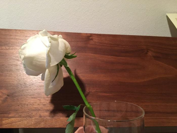 切り花を部屋に飾っていると、花がしんなりしてまうことがあります。そんな花を生き返らせるために、新聞紙を使って花の水揚げを行います。