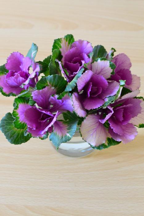 2輪で花瓶の上部が隠れてしまうほどのボリューム。