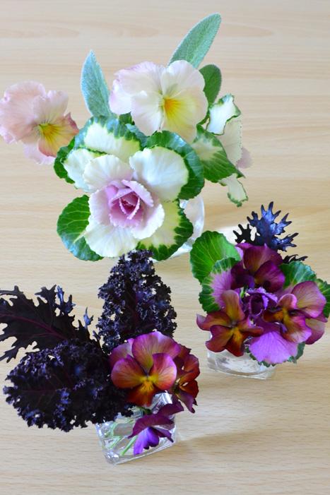シックな色から優しい色合いまで品種が豊富。花としての他、カラーリーフとして葉もの素材にもなります。
