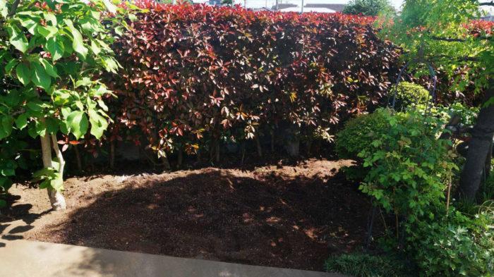 年々成長する木々で、剪定は庭師さんでないと手が負えないほどに…というお宅は意外と多いものです。 木の本数を減らしたり、大きくなり過ぎた木を管理しやすい木に植え替えたりする庭リノベで、スッキリとした管理のしやすい庭に生まれ変わります。