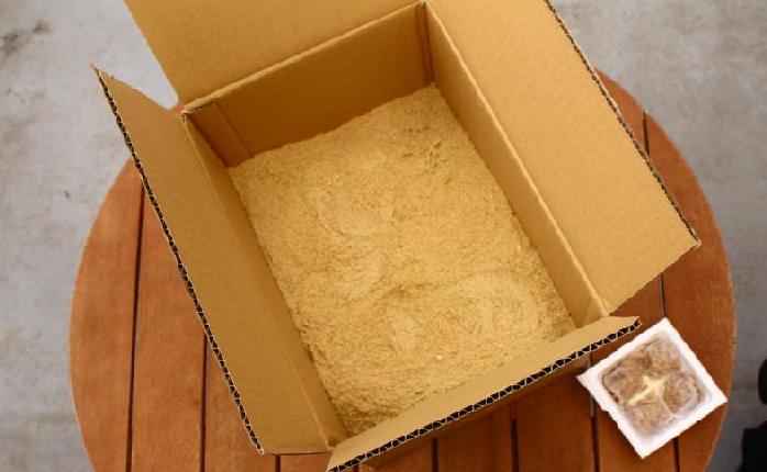 段ボールを用意するところまでは、米ぬか堆肥作りと一緒です。  そこに米ぬかを全量入れます。