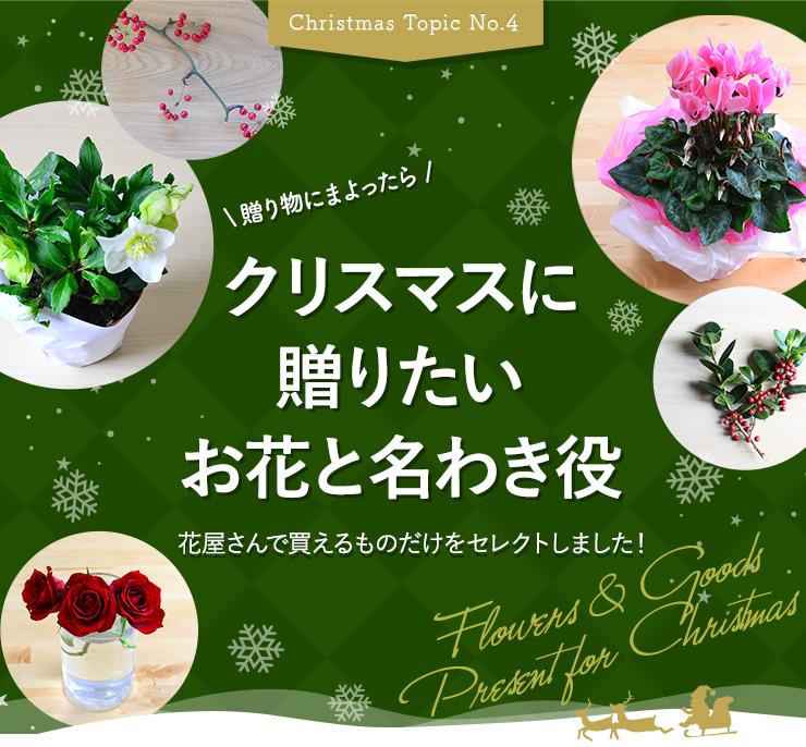花屋さんで買えるものだけをセレクト。クリスマスに贈りたいお花と名わき役