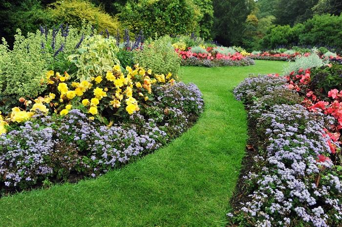 イングリッシュガーデンは自然な雰囲気を楽しむ庭です。自分の好きな花をどのように植えようか、自由な発想が楽しい庭です。しかし、自然なままと言っても、植物の特性を知り、バランスなどを計画することも必要です。それをしないと、荒れ果てた庭になってしまいます。手入れをしているのに、自然風に見せるところにイングリッシュガーデンの醍醐味があります。