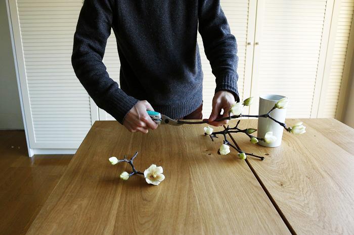 短めの枝ものだった、もしくは短くなってカットしてしまった白木蓮(ハクモクレン)は簡単にアレンジして楽しみましょう。