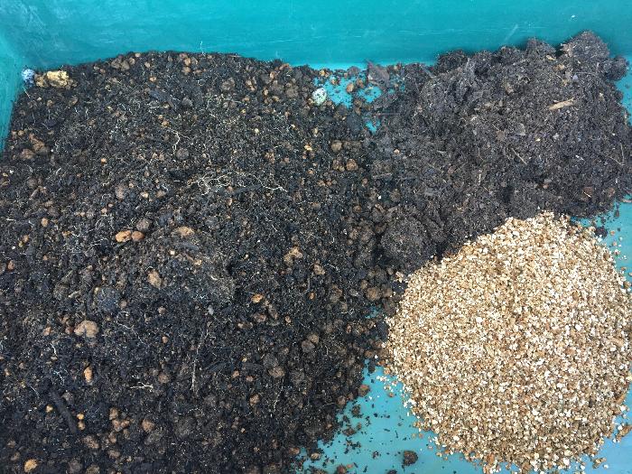 家庭菜園〜畑の目安 庭の土などの用土(6):腐葉土などの植物質堆肥(2):バーミキュライト(2)の割合を目安にして使用しましょう。
