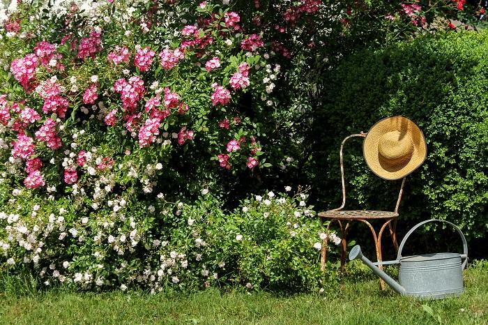 イングリッシュガーデンには自然素材が似合います。小道にはレンガやテラコッタタイルを据えたり、庭に置くベンチやテーブルも木製で。また小物もブリキやアイアンなどなるべく自然素材で統一するとよいでしょう。