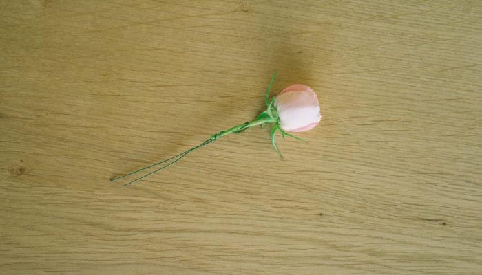 地巻きワイヤーをUピンのように半分に折ったところに茎に当てて、ワイヤーの片方を茎に2-3回巻き付けます。「巻きどめ」とか「ツイスティング」と呼ばれているお花のワイヤリング方法です。ブプレリウムのように茎が細いお花の場合には、ワイヤーを先端に輪を残して一度ねじった後で、穴に茎を通し、それからワイヤーの片方を茎に2-3回巻き付けるようにするとやりやすかったです。