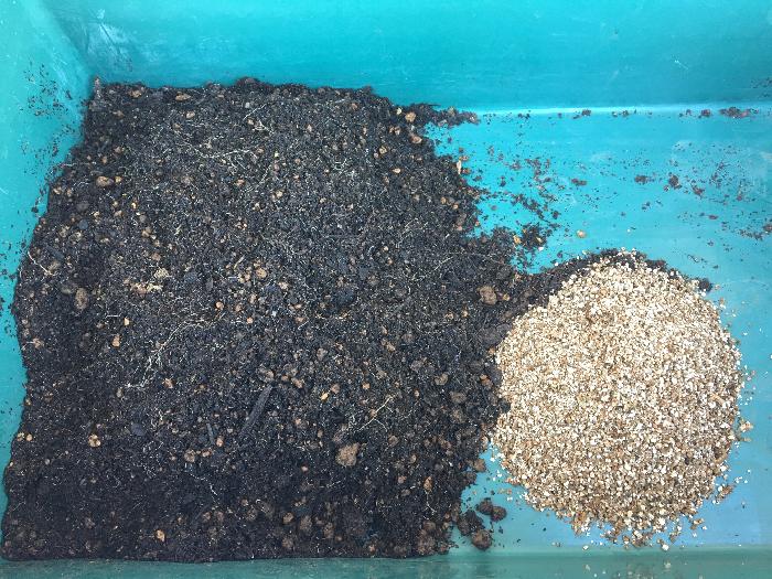 使用している土に対して、バーミキュライトを2割ほど。