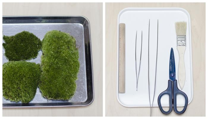 ・ホソバオキナゴケ(メインに使う苔) ・木の棒 ・ピンセット ・ハケ ・ハサミ ・薬ビン(リカシツの薬ビンを使用)