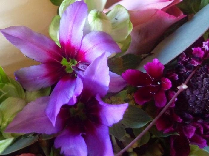 冬から春4月くらいまで出回る、星形に開く花弁が特徴的なお花です。リューココリーネの花には甘く優しい芳香があります。強くはないのに少し離れたところまで香りが跳んでくるのも印象的です。