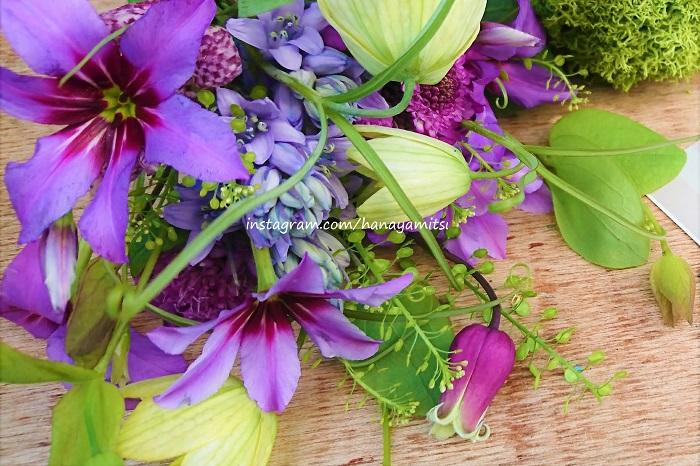 冬から春4月くらいまで出回る、星形に開く花弁が特徴的なお花です。リューココリーネの花には甘く優しい芳香があります。強くはないのに少し離れたところまで香りが跳んでくるのも印象的です。香りは、和菓子や桜の葉を思わせるような甘く優しい香りです。色は紫色の「カラベル」や白色の「ディーライト」が有名です。