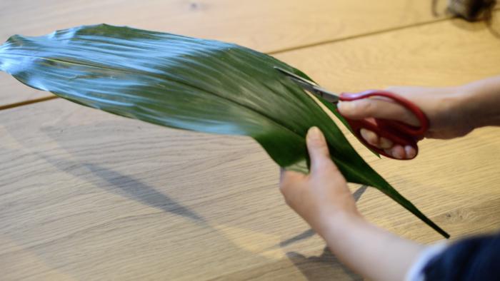 1.ハランの葉を1~1.5㎝の幅で細く切ります。