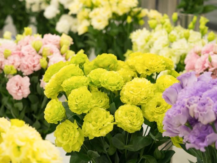 トルコキキョウの花言葉は「深い思いやり」。出産のお祝いにぴったりですね。  トルコキキョウは色のバリエーションも豊富で、色選びに迷ってしまいますが、元気で健康的な印象を受ける黄色のトルコキキョウを贈っても喜ばれます。
