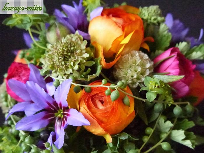 ラナンキュラスはお花が開くと驚くほど大きくなることを覚えておいてあげてください。