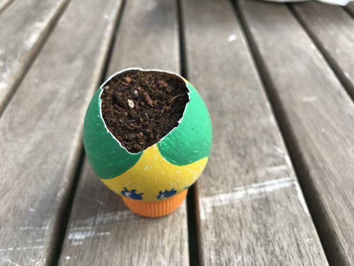 3.たまごの殻に土を入れます。