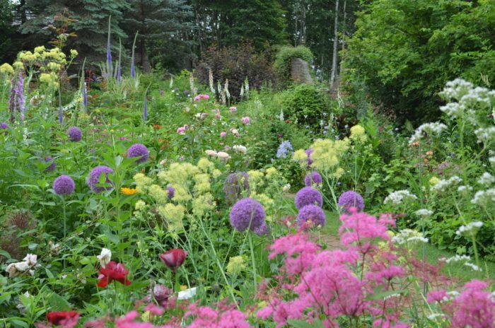 色彩豊かなマザーズガーデン。上野ファームの庭づくりの一歩はここから始まりました。上野ファームにとって、思い入れ深い記念すべき庭なんです。