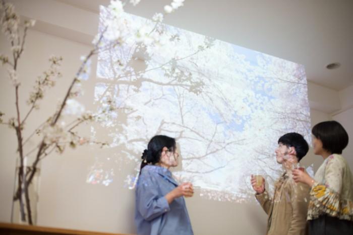 プロジェクターで桜の動画を流し、スマートフォンで春にちなんだ音楽を流しても、華やいでにぎやかにお花見が楽しめそう!  インターネットで、無料に公開しているお花見バーチャル動画なども利用できそうですね。
