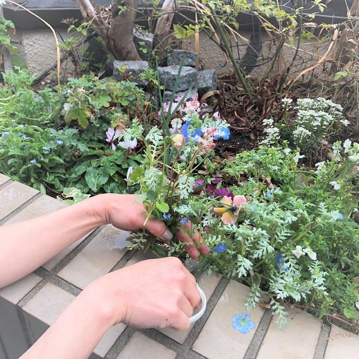 イースターは春の到来を楽しむイベントです。せっかくですからお庭に咲いている身近な春の花を使ってアレンジメントにしてみませんか。特別なお花はいりません。お庭にやってきた春を歓迎してあげてください。  今回はラブグリーン編集部の屋上花壇に咲いているお花たちを摘んでアレンジメントにしました。